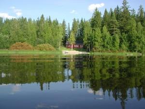 Ninnunlahti järveltä